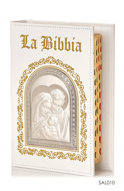 Bible Cover for Small Indo Bible+LA Bibbia Gold+Dome Argento Holy