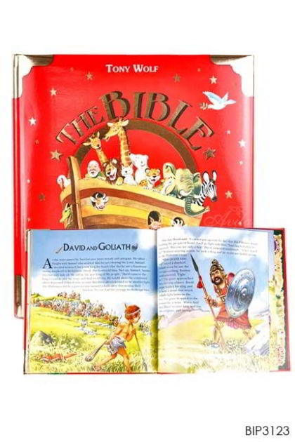 ENGLISH BIBLE - The Bible Padded Hardcover
